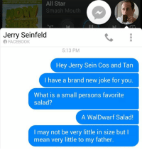 ok: All Star  Smash Mouth  Jerry Seinfeld  FACEBOOK  5:13 PM  Hey Jerry Sein Cos and Tan  have a brand new joke for you.  What is a small persons favorite  Salad?  A Wal Dwarf Salad!  I may not be very little in size but I  mean very little to my father. ok