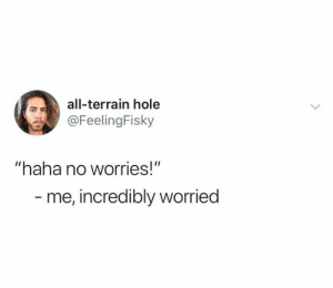 "Haha, Hole, and All: all-terrain hole  @FeelingFisky  ""haha no worries!""  - me, incredibly worried"