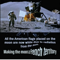 Oui oui baguette 👌: All the American flags placed on the  moon are now white due to radiation  rom the sun.  Makingthe mona fenchteriory Oui oui baguette 👌