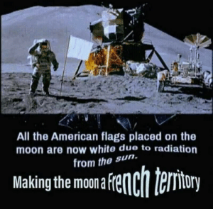 me_irl: All the American flags placed on the  moon are now white due to radiation  rom the sun.  Makingthe mona fenchteriory me_irl