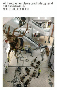 reindeers: All the other reindeers used to laugh and  call him names J  SO HE KILLED THEM