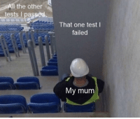 me_irl: All the otherS  tests I passed  That one test l  failed  My mum me_irl