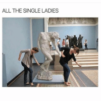 (@cabbagecatmemes ) makes some of the best memes I've ever seen!: ALL THE SINGLE LADIES (@cabbagecatmemes ) makes some of the best memes I've ever seen!