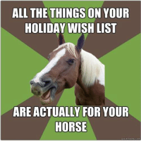 Equestrian problems. Tag someone that has this problem too! 😏: ALL THE THINGS ON YOUR  HOLIDAY WISH LIST  ARE ACTUALLY FOR YOUR  HORSE  quick meme com Equestrian problems. Tag someone that has this problem too! 😏