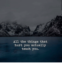 All The, All the Things, and All: All the things that  hurt you actually  teach you