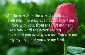I Love My Wife Meme, Funny Wife Memes - 2018 Edition: All the words in the world could not  even begin to describe how deeply t am  in love with you, from the first moment  I saw you until the never-ending  heartbeat you have given me. You are not  only my love, but you are my Soul. I Love My Wife Meme, Funny Wife Memes - 2018 Edition