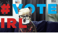Dank, Videos, and Tomorrow: All the YouTubers are going to #voteIRL tomorrow. But we can't just stop making videos. We present to you: 🇺🇸 🐶  https://goo.gl/MWRK7B