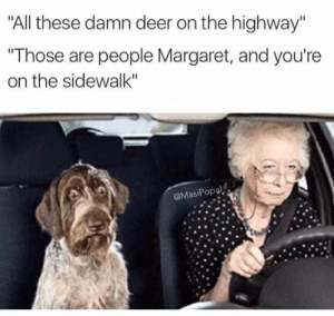 "Meme dump V: ""All these damn deer on the highway""  ""Those are people Margaret, and you're  on the sidewalk""  @MasiPopal Meme dump V"