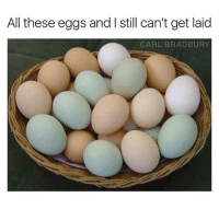 This is amazing 😂🥚, smash that like if you enjoy these types of puns 😊♥️: All these eggs and I still can't get laid  CARL BRADBURY This is amazing 😂🥚, smash that like if you enjoy these types of puns 😊♥️