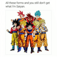 Anime, Bulma, and Dragonball: All these forms and you still don't get  what I'm Saiyan. Hope y'all like my new way of posting, one meme, then swipe to see all the pics!! Goku Vegeta Beerus Whis Xenoverse2 goten trunks bulma chichi Gohan otaku ssj ssj2 ssj3 ssj4 anime Zwarriors SuperSaiyanBlue Dragonball DragonballZ DragonballGT DragonballSuper Db Dbz Dbgt Dbs anime NamcoBandai over9000