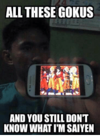 Me irl: ALL THESE GOKUS  AND YOU STILL DONT  KNOW WHATIM SAIYEN Me irl