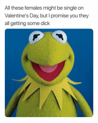 Valentine's Day, Dick, and Dank Memes: All these temales miaht be sinale on  Valentine's Day, but l promise you they  all getting some dick Pretty Much. 👍🏾💯