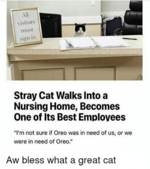 """Best, Home, and World: All  visitors  must  sign in.  Stray Cat Walks Into a  Nursing Home, Becomes  One of Its Best Emplovees  """"I'm not sure if Oreo was in need of us, or we  were in need of Oreo.""""  Aw bless what a great cat The world needs more employees like this"""