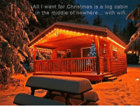 Dank, 🤖, and Log: All want for Christmas is a log cabin  in the middle of nowhere  with wifi. With you guys <3