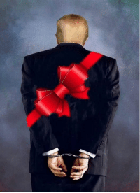 Christmas, Thx, and All: All we want for Christmas.  Thx We Resist for sharing.