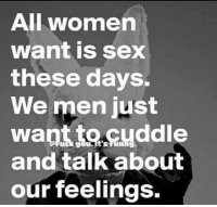 Funny Sex Memes: All women  want is sex  these days.  We men just  want tocuddle  and talk about  our feelings.