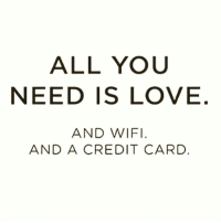 Funny, Credit Cards, and Wifi: ALL YOU  NEED IS LOVE  AND WIFI  AND A CREDIT CARD @thebossbitchlife is my new favorite account 🙌🏻❤️📶💳
