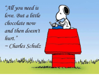 Love, Memes, and Chocolate: All you need is  love. But a little  chocolate now  and then doesn't  hurt.  1y  iarles Schulz