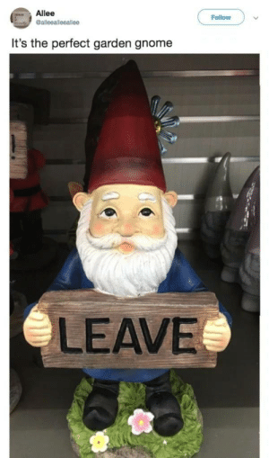 Allée: Allee  Follow  @alleealleeallee  It's the perfect garden gnome  LEAVE
