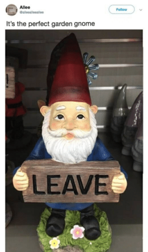 Allée: Allee  Follow )  It's the perfect garden gnome  LEAVE
