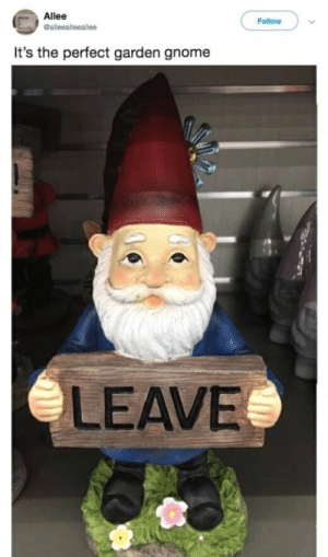 Allée: Allee  Follow  It's the perfect garden gnome  LEAVE