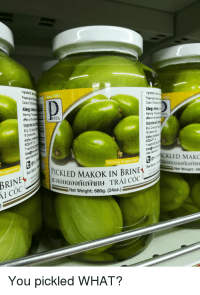 "Memes, Http, and Coc: Allery  NTA  mportk  D34  ICKLED MAK  PICKLED MAKOK IN BRINE  Net Weight: 68  au TRÁI CO  Net Weight: 680g. (24oz.)  I CÓC  You pickled WHAT? <p>oh no i seem to have&hellip; via /r/memes <a href=""http://ift.tt/2svSv6j"">http://ift.tt/2svSv6j</a></p>"