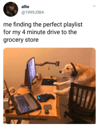 Instagram, Animal, and Best: allie  @1999J0BA  me finding the perfect playlist  for my 4 minute drive to the  grocery store Our @animalsmeettheinternet page has the best compilation of animal content on instagram!