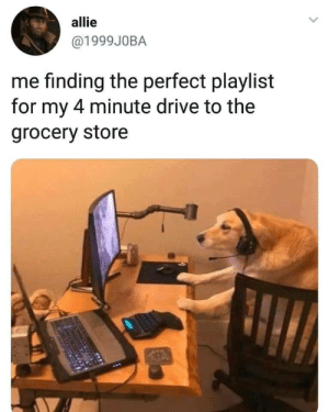 Memes, Music, and Tumblr: allie  @1999J0BA  me finding the perfect playlist  for my 4 minute drive to the  grocery store best-of-memes:  Can t go without good music.