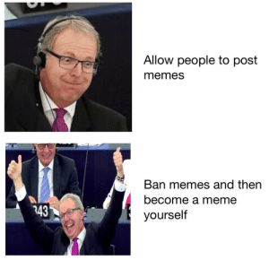 Meme, Memes, and Post: Allow people to post  memes  Ban memes and then  become a meme  yourself  343 The EU copyrighted this for me.