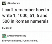 Instagram, Puns, and Home: allteenhumor  I can't remember how to  write 1, 1000, 51, 6 and  500 in Roman numerals  I M LIVID  sweaterkittensahoy  Everyone go home. Puns are done. Instagram: @punsonly