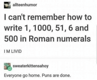 Puns, Home, and How To: allteenhumor  I can't remember how to  write 1, 1000, 51, 6 and  500 in Roman numerals  I M LIVID  sweaterkittensahoy  Everyone go home. Puns are done.