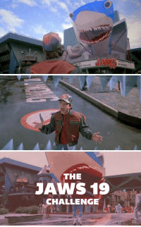 thesonicscrew:  protector-of-the-small:  trans-dyke:  ctrayn:  So according to the movie Back to the Future Part II, by the year of our lord 2015 there are supposed to be 19 movies in the Jaws franchise. As of January 2014, there are only 4. I personally see this as an enormous travesty, which is why I'm calling on the internet to rectify this grievous mistake. I challenge the geek community, the web community, the YouTube community, the film community, the time travel community, the hypothetical Jaws community, and the local community college to answer my call and create 15 new JAWS feature-length movies before October 21st, 2015. According to the Academy of Motion Picture Arts and Sciences, American Film Institute, and British Film Institute, a feature film has to be at least 40 minutes long. So even if your film is 40 straight minutes of a rubber shark floating quietly in a bathtub, it still fulfills what I am asking of you in the challenge, and it is still probably a more entertaining watch than Jaws: the Revenge. So grab your camera phones, a bucket, and that inflatable shark you bought at the dollar store, because it's showtime. Live-action, stop-motion, puppets, pencil animation, CG, piss on film- it doesn't matter how you create the movie! Just go and make the 2015 of Back to the Future II a reality. Signal boost, if you please!  I would piss my pants if someone did the 19th one in the same style as in bttf2. It's so easily possible now too. omfgg  Please I want this  see now this is the meme 2015 needs : ALLY Personal   THE  JANS 19  CHALLENGE thesonicscrew:  protector-of-the-small:  trans-dyke:  ctrayn:  So according to the movie Back to the Future Part II, by the year of our lord 2015 there are supposed to be 19 movies in the Jaws franchise. As of January 2014, there are only 4. I personally see this as an enormous travesty, which is why I'm calling on the internet to rectify this grievous mistake. I challenge the geek community, the web community, the Yo
