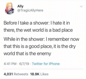 Bad, Dank, and Iphone: Ally  @TragicAlly Here  Before I take a shower: I hate it in  there, the wet world is a bad place  While in the shower: I remember now  that this is a good place, it is the dry  world that is the enemy  4:41 PM 6/7/19 Twitter for iPhone  4,031 Retweets 18.9K Likes meirl by BoReon MORE MEMES