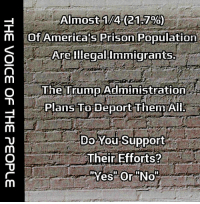 America, Memes, and Prison: Almost-1/412137%):  Of America s Prison Population  Arelllegal:Immigrants.  The Trump Administration  Plans To Deport ThemAI  9  Do You Support  Their Efforts? Do you support the immediate deportation of the 21.7℅? #NoAmnesty #SecureTheBorders
