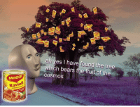 Meme, Bears, and Tree: alni yes I have found the tree  which bears the fruit of the  cosmosS  Maggi  Ravioli  in Tomatensaue <p>Meme man find the fruit</p>