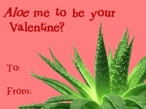i-ran-away-to-paradise:  I MADE THIS. :D: Aloe me to be your  Valentine?  To:  From: i-ran-away-to-paradise:  I MADE THIS. :D