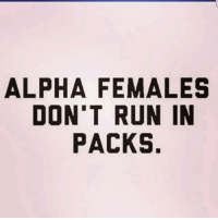 alpha: ALPHA FEMALES  DON'T RUN IN  PACKS.