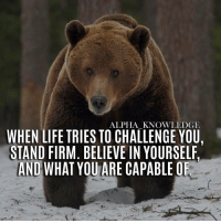 Go ahead. Try to shake me. alpha knowledge alphaknowledge: ALPHA KNOWLEDGE  WHEN LIFE TRIES TO CHALLENGE YOU.  STAND FIRM. BELIEVE IN YOURSELF.  AND WHAT YOUARE CAPABLE OF Go ahead. Try to shake me. alpha knowledge alphaknowledge