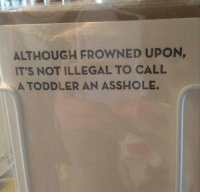 They have a point.: ALTHOUGH FROWNED UPON,  IT'S NOT ILLEGAL TO CALL  A TODDLER AN ASSHOLE They have a point.