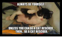 Alway Be Yourself: ALWAYS BE YOURSELF.  UNLESS YOU CAN BEACATRESCUER.  THEN, BE A CAT RESCUER.