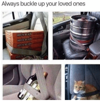 God, Buckle, and Trendy: Always buckle up your loved ones  HOEN READY  HOTN READY  HON READY @god loves us all