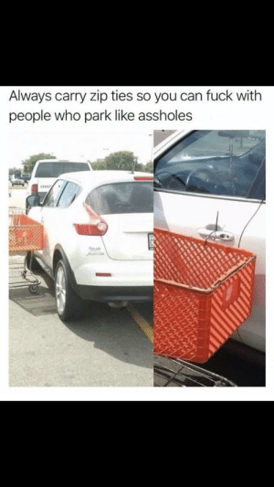 Fuck, Who, and Can: Always carry zip ties so you can fuck with  people who park like assholes Ha