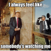 Obama outed for illegal partisan spying & abuse of power.  Visit our Store 👉🏽 https://goo.gl/zS6WxN Use code CDHLIFE10 for 10% off Support 2nd Amendment Advocacy Use code CDHLIFE10 for 10% off SHARE & FOLLOW US: always feel  like  Somebody watching me Obama outed for illegal partisan spying & abuse of power.  Visit our Store 👉🏽 https://goo.gl/zS6WxN Use code CDHLIFE10 for 10% off Support 2nd Amendment Advocacy Use code CDHLIFE10 for 10% off SHARE & FOLLOW US