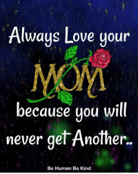 Love, Memes, and Never: Always Love youn  because you will  never gel Anolner..  Be Human Be Kind