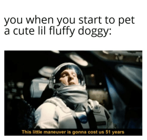 Always pet the doggy: Always pet the doggy