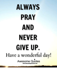 Adorable Quotes: ALWAYS  PRAY  AND  NEVER  GIVE UP.  Have a wonderful day!  Awesome Quotes  www.Awesomequotes4u.com Adorable Quotes