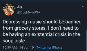 meirl: Aly  @DogMomUSA  Depressing music should be banned  from grocery stores. I don't need to  be having an existential crisis in the  soup aisle.  10:39 AM 14 Jun 19 Twitter for iPhone meirl