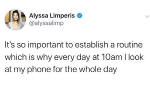meirl: Alyssa Limperis  @alyssalimp  It's so important to establish a routine  which is why every day at 10am I look  at my phone for the whole day meirl
