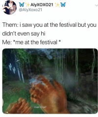 Music, Saw, and Festival: @AlyXoxo21  Them: i saw you at the festival but you  didn't even say hi  Me: *me at the festival* Music festivals look fun