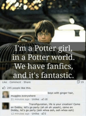 Life, Party, and Girl: A'm a Potter girl,  in a Potter world.  We have fanfics,  and it's fantastic.  Like Comment Share  19  245 people like this.  boys with ginger hair,  muggles everywhere  21 minutes ago Unlike 18  Transfiguration, life is your creation! Come  on Dobby, let's go party (ah ah ah yeaah), come on  Dobby, let's go party (ooh whoa ooh, ooh whoa ooh)  12 minutes ago Unlike S 🙃